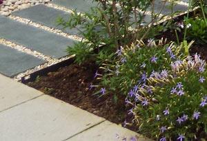 Fire Garden Design Whitstable
