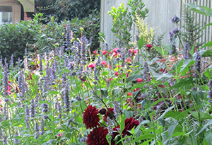 Planting Whitstable
