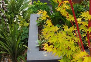 Rust Garden Design Whitstable