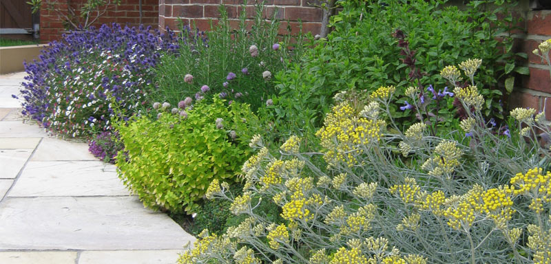 Planting Garden Design in Whitstable