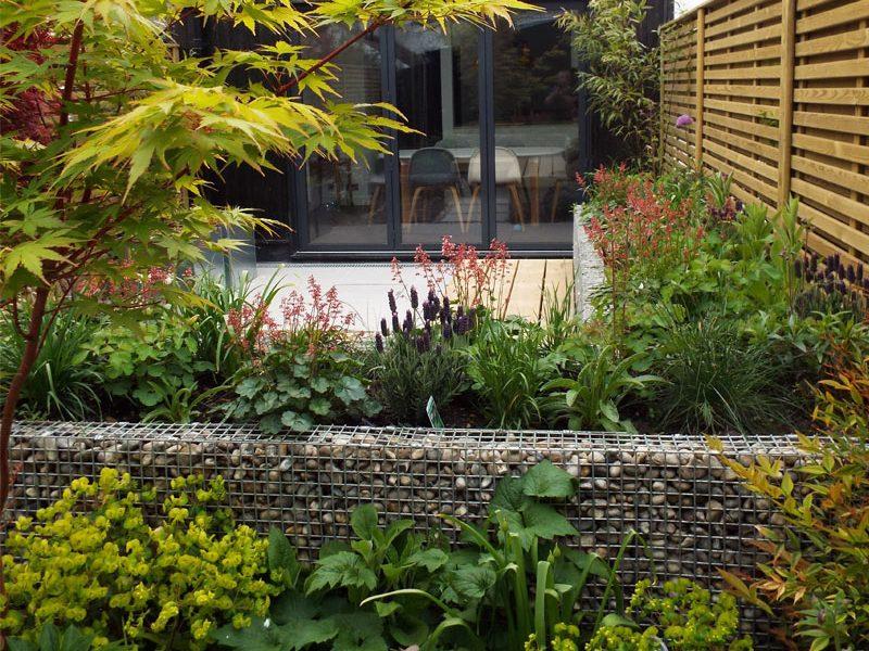 Monochrome Garden